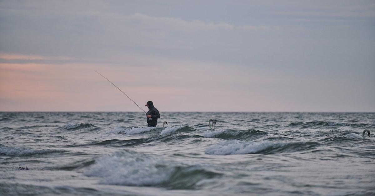 fishingindenmark.info